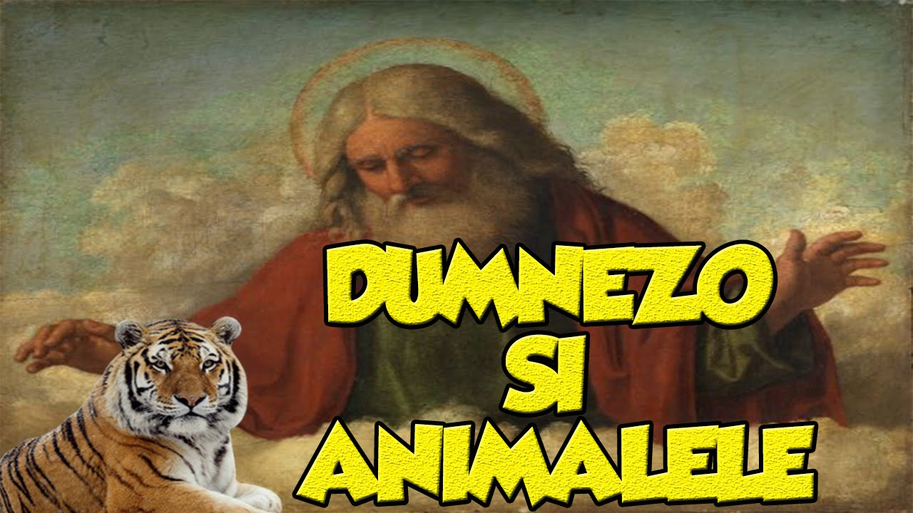 Furia lui Fratzica – Dumnezo si animalele (S01E06)